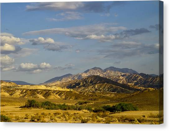 Desert Vista Canvas Print