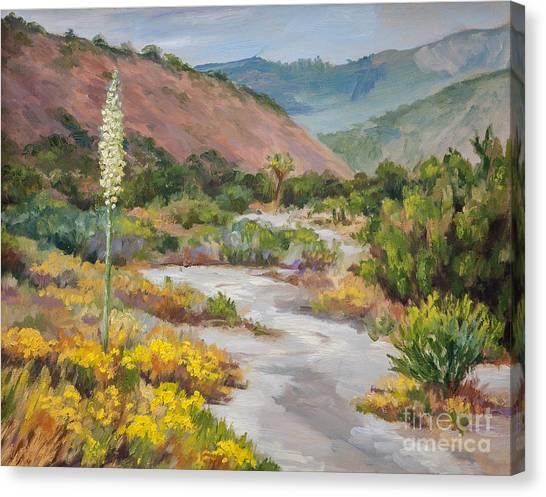 Mirages Canvas Print - Desert Wash by Laura Sapko
