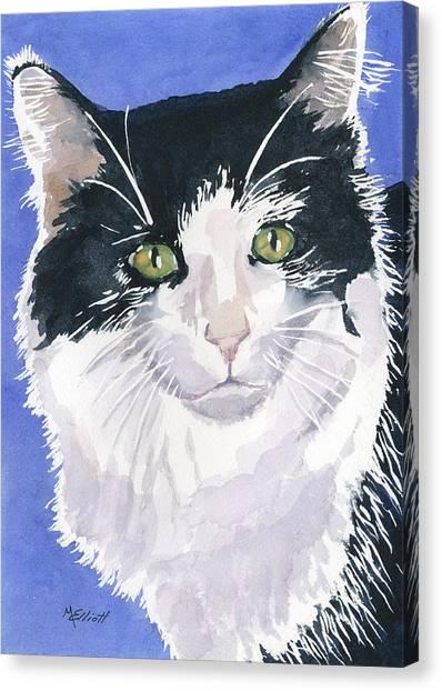 Tuxedo Canvas Print - Desi by Marsha Elliott