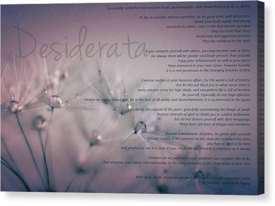 Desiderata - Dandelion Tears Canvas Print