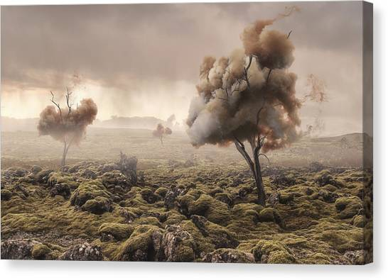 Pollution Canvas Print - Desolation by Matthias Bergolth