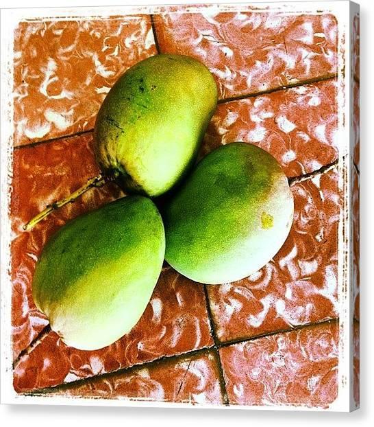 Mangos Canvas Print - Despertarse Un Lunes Feriado Y by Giannina Berrios