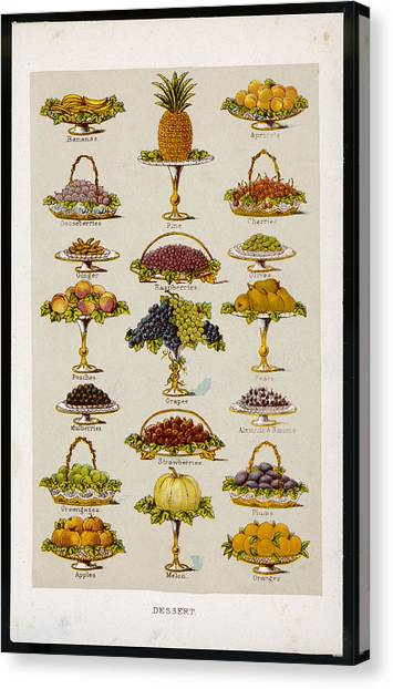 Dessert Fruits, Including  Ginger Canvas Print by Mary Evans Picture Library