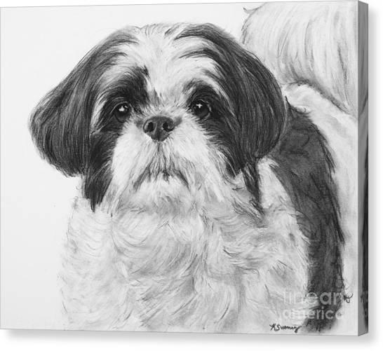 Detailed Shih Tzu Portrait Canvas Print