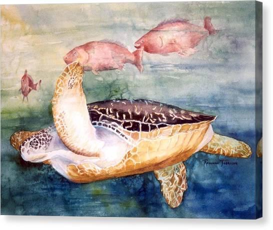 Determined - Loggerhead Sea Turtle Canvas Print