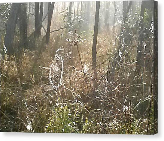 Dew Kissed Web Canvas Print by Chasity Johnson