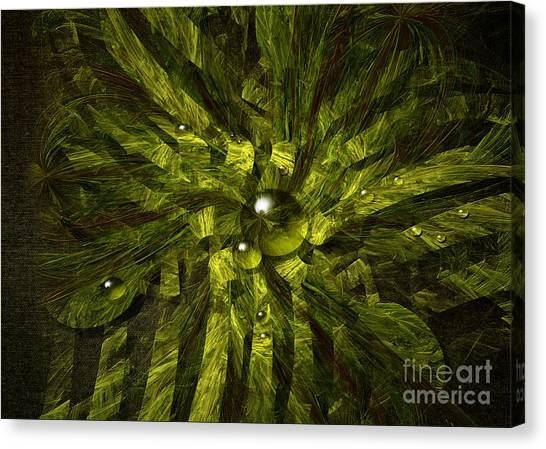 Dewdrops Canvas Print