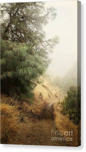 There And Back Again Canvas Print
