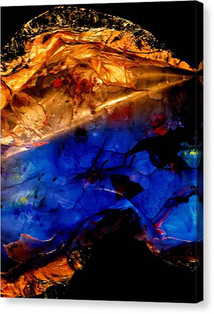Dichotomy Lll Canvas Print by Colleen Cannon