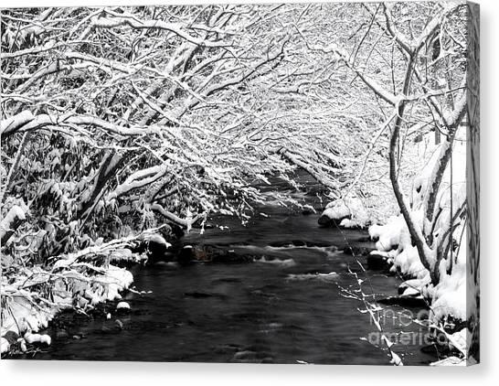 Dick's Creek Snow 2014 Canvas Print