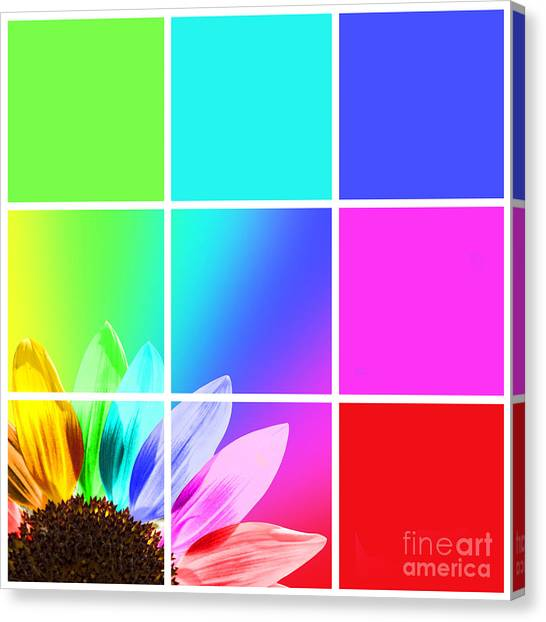 Light Paint Canvas Print - Diffraction Of Light by Delphimages Photo Creations