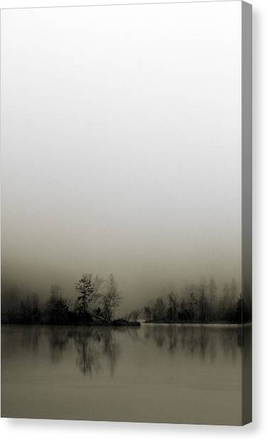 Diffusion Canvas Print by Henrik Spranz