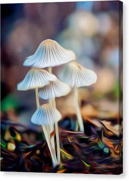 Digital Art Mushrooms Canvas Print by Tammy Smith