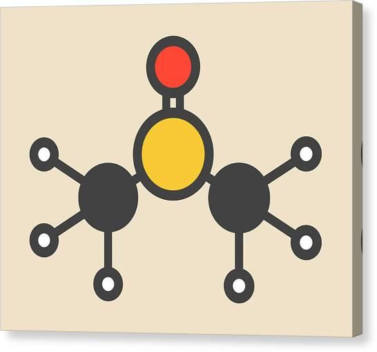 Dimethyl Sulfoxide Molecule Canvas Print by Molekuul