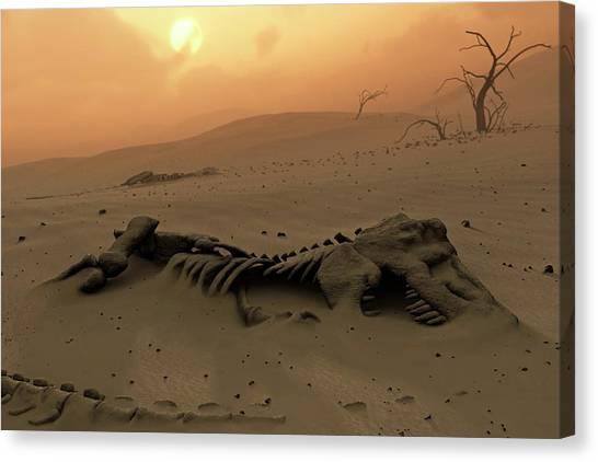 Steak Canvas Print - Dinosaur Skeletons In The Desert by Mark Garlick/science Photo Library