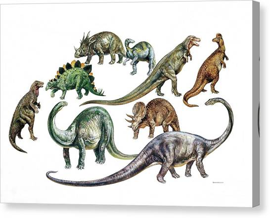 Brachiosaurus Canvas Print - Dinosaurs by Deagostini/uig
