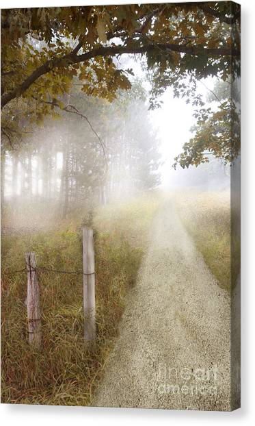 Dirt Road In Fog Canvas Print