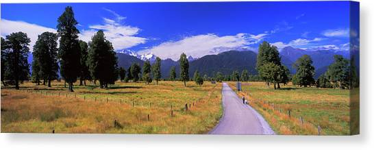 Fox Glacier Canvas Print - Dirt Road Passing Through A Field, Fox by Panoramic Images