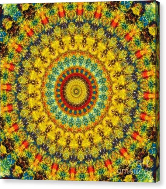 Divine Will Canvas Print