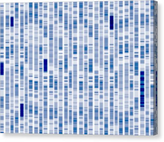 Genetics Canvas Print - Dna Autoradiogram by Alfred Pasieka/science Photo Library