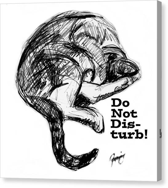 Libertarian Canvas Print - Do Not Disturb Text by Mary Fanning