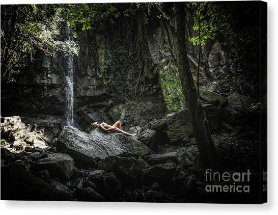 Do You Believe In Faeries Canvas Print