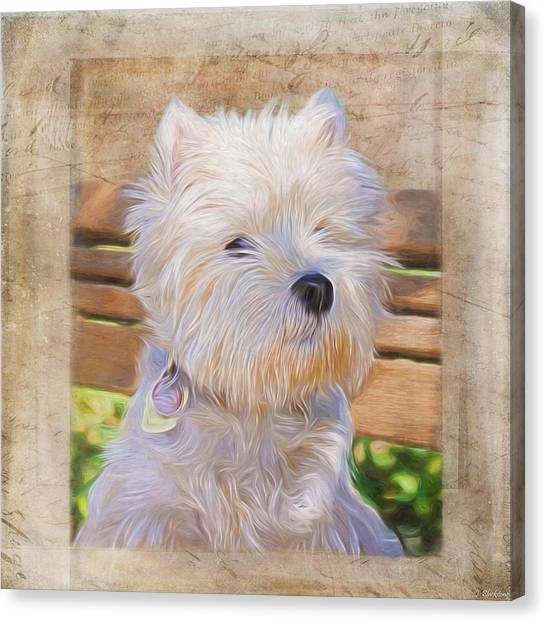 Dog Art - Just One Look Canvas Print