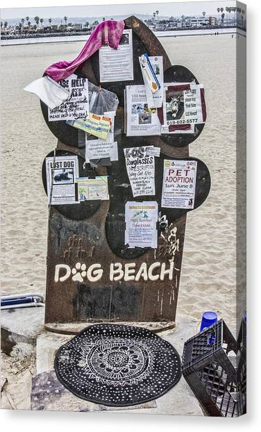 Dog Beach  Canvas Print by Photographic Art by Russel Ray Photos
