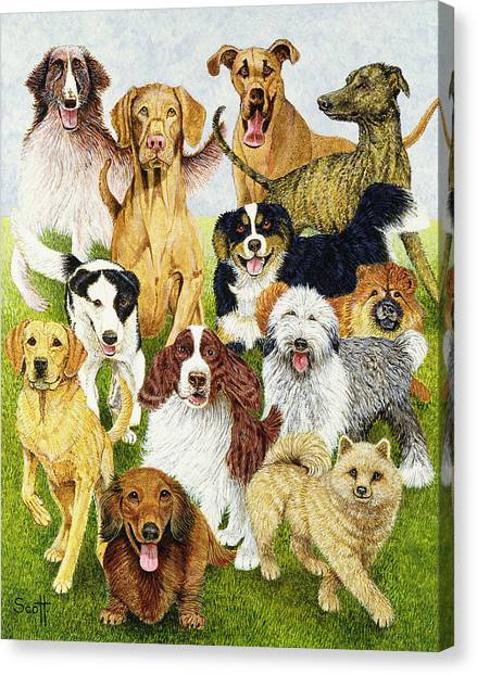 Great Danes Canvas Print - Dog Days by Pat Scott