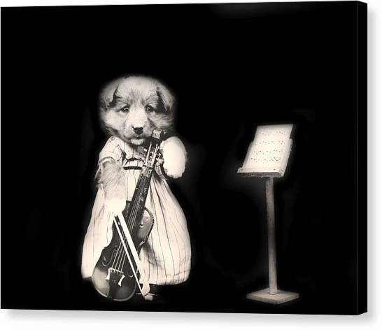 Violins Canvas Print - Dog Serenade by Mountain Dreams