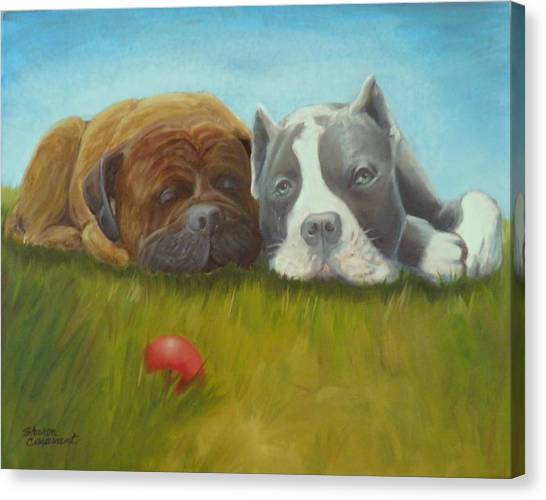 Dog Tired Canvas Print by Sharon Casavant