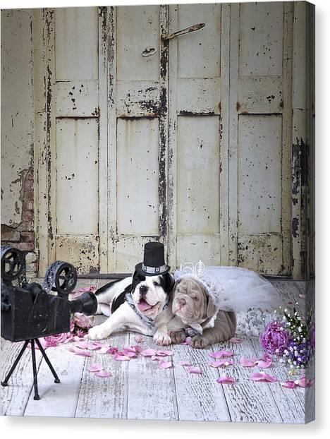 Wedding Bouquet Canvas Print - Dog Wedding by MGL Meiklejohn Graphics Licensing