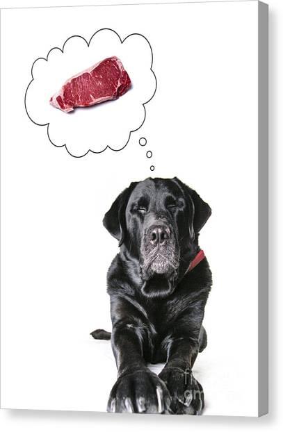Steak Canvas Print - Doggie Dreams by Diane Diederich