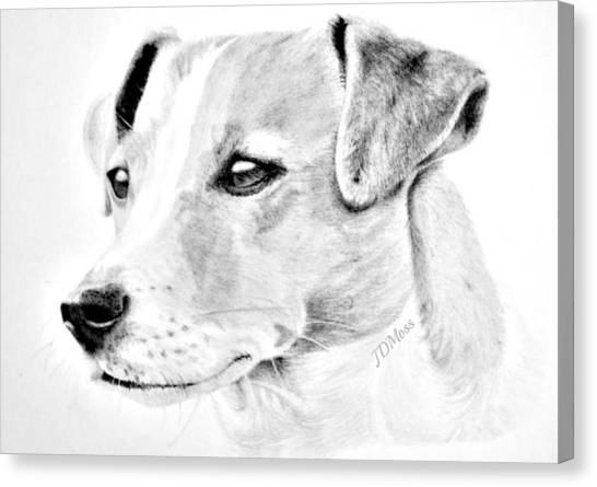 Doggie Canvas Print by Janet Moss