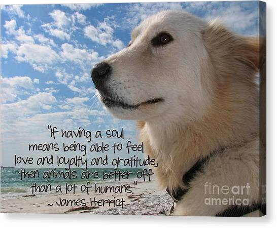 Doggie Soul Canvas Print