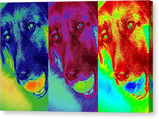 Doggy Doggy Doggy Canvas Print