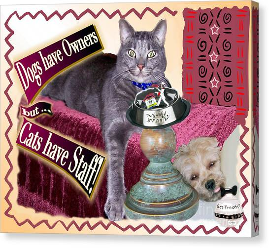 Dogs Have Owners - Cats Have Staff Canvas Print