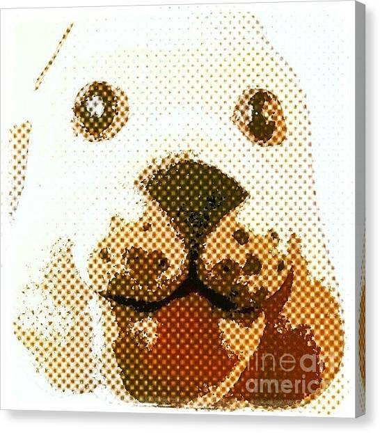 Head Canvas Print - Dogs Head by Abbie Shores