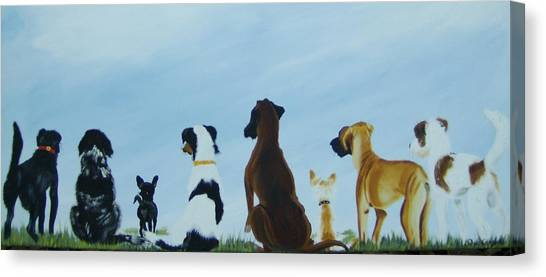 Dogs Looking For Our Forever Home Canvas Print