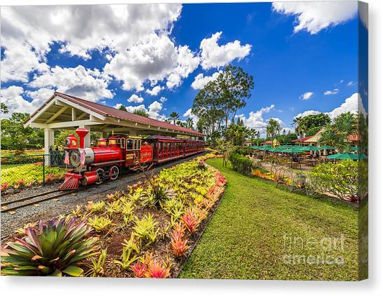 Dole Plantation Train Canvas Print