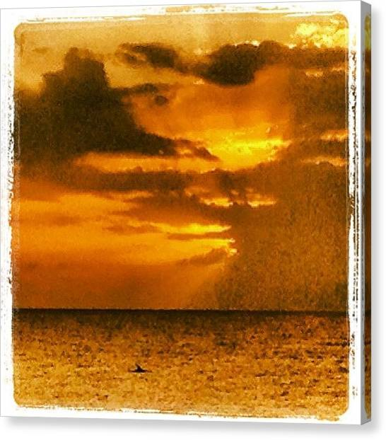 Dolphins Canvas Print - #dolphin #at #sunset #love #family by Sarah Pratt Harvanek