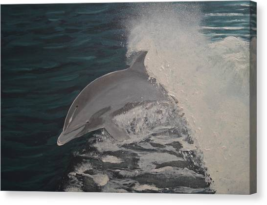 Dolphin In The Wake Canvas Print