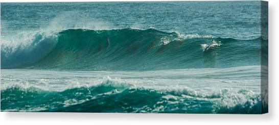 Dolphins In Wave 10 Canvas Print