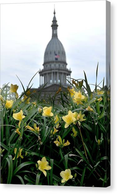 Dome Through The Daffodils Canvas Print