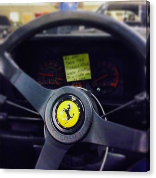Roosters Canvas Print - Don Johnson #ferrari #silver Kicked Me by Jake Work
