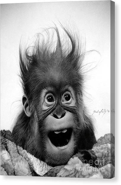 Orangutan Canvas Print - Don't Panic by Miro Gradinscak