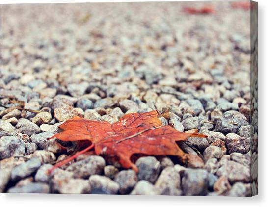 Autumn Leaves Canvas Print - Don't Tread On Me by Maddy Anne