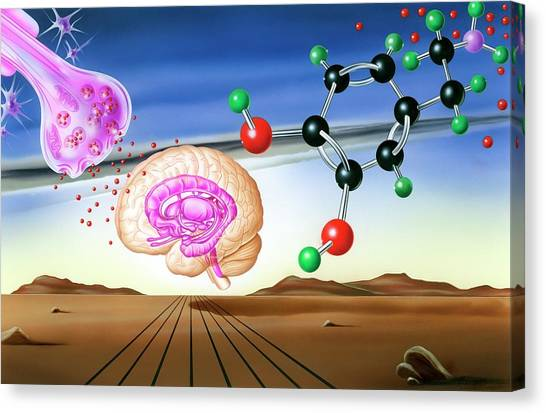 Molecule Canvas Print - Dopamine Brain Chemistry by John Bavosi