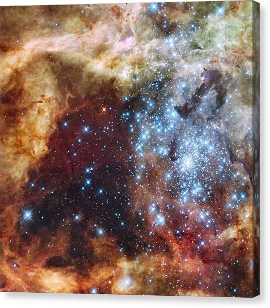 Doradus Nebula Canvas Print