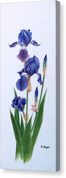 Dot's Iris Canvas Print